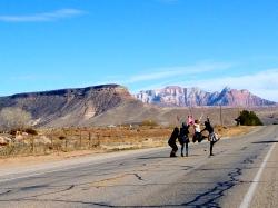 Tourists near Zion National Park