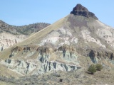John Day Fossil Beds: Fossil here, fossil there, fossilseverywhere!