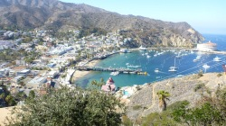 Avalon Bay at Catalina Island
